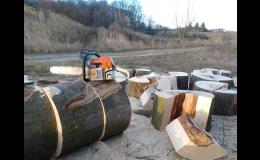 Pěstování lesa, prořezávky i těžba dřeva