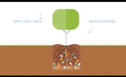 TerraCottem Arbor stačí aplikovat pouze jednou, a to při výsadbě stromů či keřů
