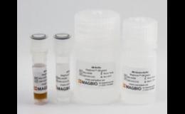 Skenování a tekutá biopsie