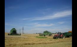 Prodej pšenice, zelí i brambor Frýdek-Místek