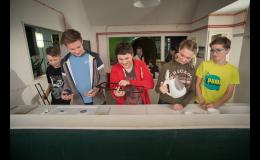 Alternátor, výukové programy pro žáky druhé stupně základních škol