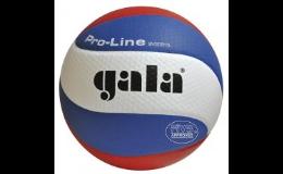 Volejbalový míč Gala Pro-Lineb - eshop