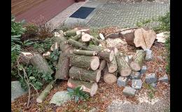 pořez stromů na polínka Zlínský kraj