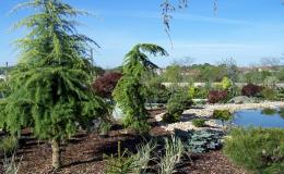 Realizace okrasných zahrad Brno