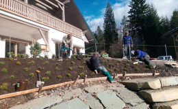 Úprava terénu - výsadba rostlin Frýdek-Místek