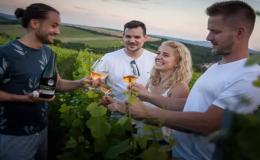 Skupinové, firemní akce, teambuilding ve vinohradu jižní Morava