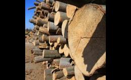 Dřevo na topení k prodeji Znojmo