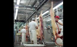 Projekty pro potravinářský průmysl