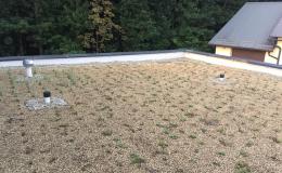 Zelené přírodní střechy - návrh a realizace