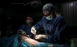 3D laparoskopie zvířat