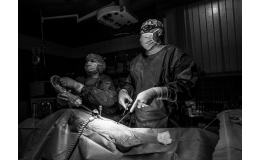 3D laparoskopická veterinární operace