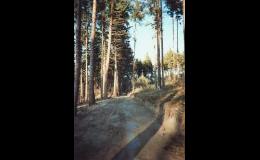 Zemní práce, rekultivace pozemků, opravy chodníků, Vysočina