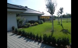 zahrada se závlahovým systémem
