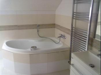 rekonstrukce koupelen pro Olomoucký kraj