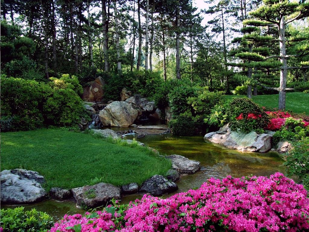 Založení trávníku a péče o zahradu