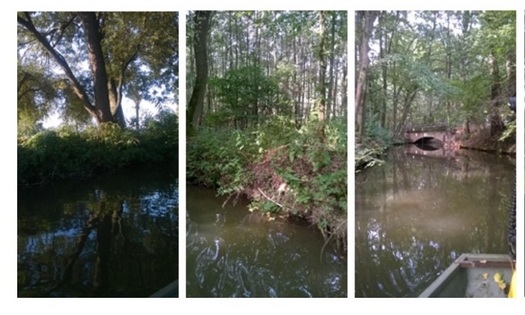 Revitalizace vodotečí, rybníků