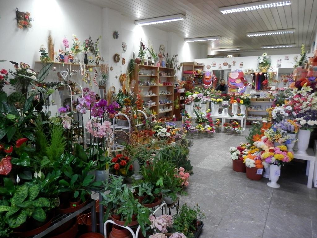 Kvetinarstvi Tabor Michaela Reiterova