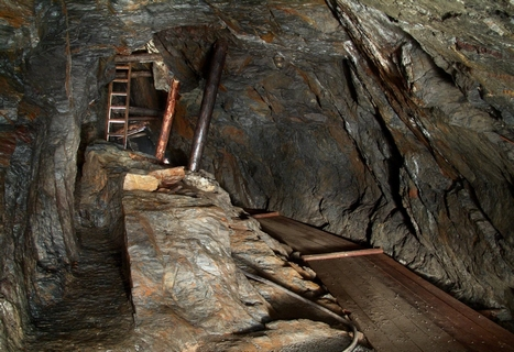 Výkon státní geologické služby