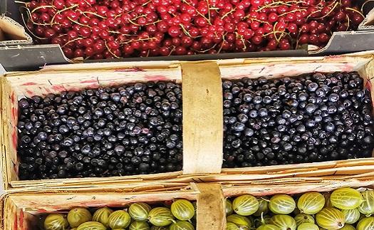 Prodejna ovoce a zeleniny Znojmo