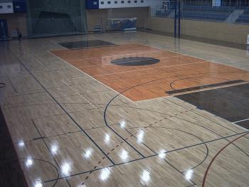 Sportovn� podlahy, IDE�LN� PODLAHY