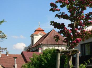Město Dolní Bousov