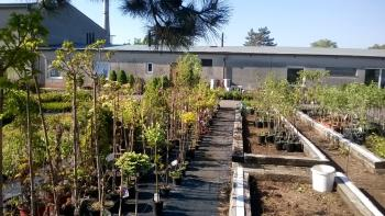Zahradnictví Opava, Garden centrum - Raida Zahradnictví Opava