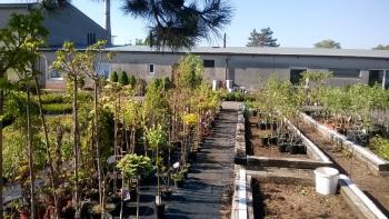 Gardeo zahradnictvi