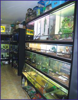 Jaroslav Boranek - ZOO Laguna Potreby pro akvaristiku a teraristiku