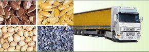 Zemědělské suroviny - jáhly, pohanka, zelenina, Bialoň trade, a.s.