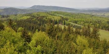 Ekologie lesa, Výzkumný ústav lesního hospodářství a myslivosti, v. v. i.