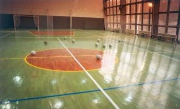 Sportovní podlahy, Design sport service BAFR společnost s ručením omezeným