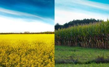 Zemědělská rostlinná výroba, Zemědělské obchodní družstvo Ludmírov
