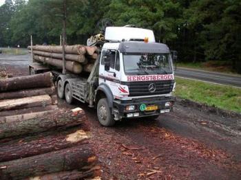 Vnitrostátní a mezinárodní přeprava dřeva, HENGSTBERGER s.r.o.