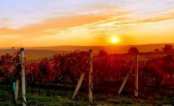 Západ slunce, Město Velké Bílovice