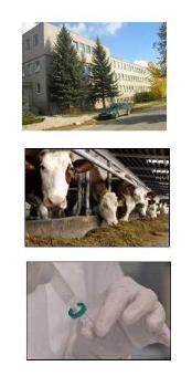 St�tn� veterin�rn� �stav Jihlava