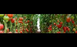 Výroba speciálních práškových a tabletových pomalu rozpustných hnojiv
