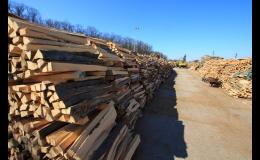 Velkoobchod se dřevem