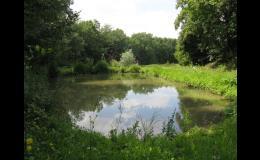 projekty malých vodních ploch