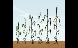 Zemědělská hnojiva