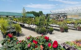 Zahradnický sortiment pro dům i zahradu