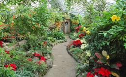 Celoroční údržba zahrad - Uherské Hradiště