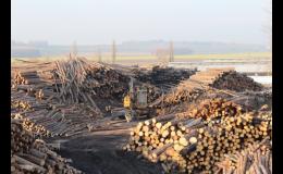 Dřevářská výroba, pila Opava