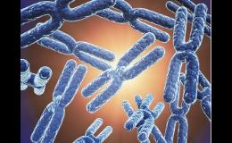 Vyšetření v oblasti genetiky, genetické testy DNA