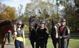 Chov a výcvik koní, výuka jízdy na koních