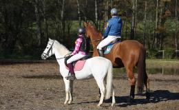 Výuka jízdy na koních i s ubytováním