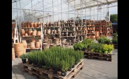 Zahradnictví, zahradní centrum - prodej venkovní a vnitřní keramiky
