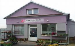 Řezané, hrnkové květiny a květinové vazby nakoupíte v květinářství Ivana Slavovová Prostějov