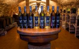 Bílá a červená moravská vína  - prodej přes e-shop
