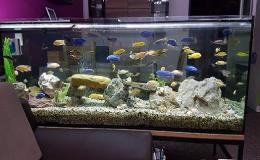 Zakázková výroba ze skla - akvária, terária, sklenářství Prostějov