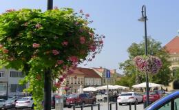 Květinové mobiliáře pro města a obce, mechanizované sázení cibulovin